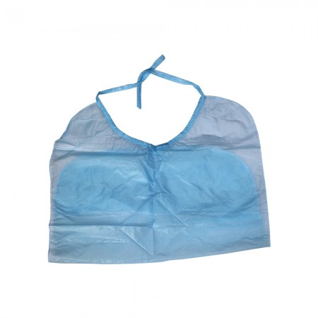 Disposable Adult Bibs (Set of 10 Pcs)