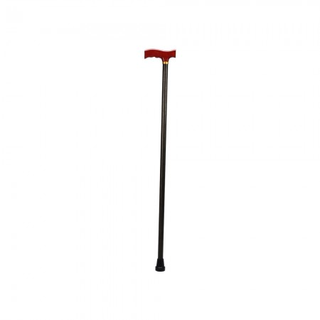 Fixed Walking Stick